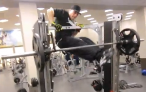 Muscle Ups in on Gym Equipment
