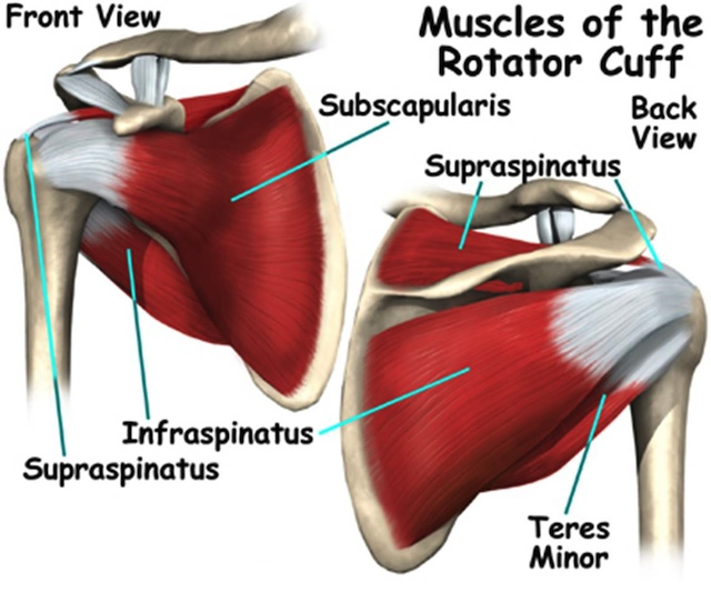 shoulder injury prevention exercises prevent shoulder injuries
