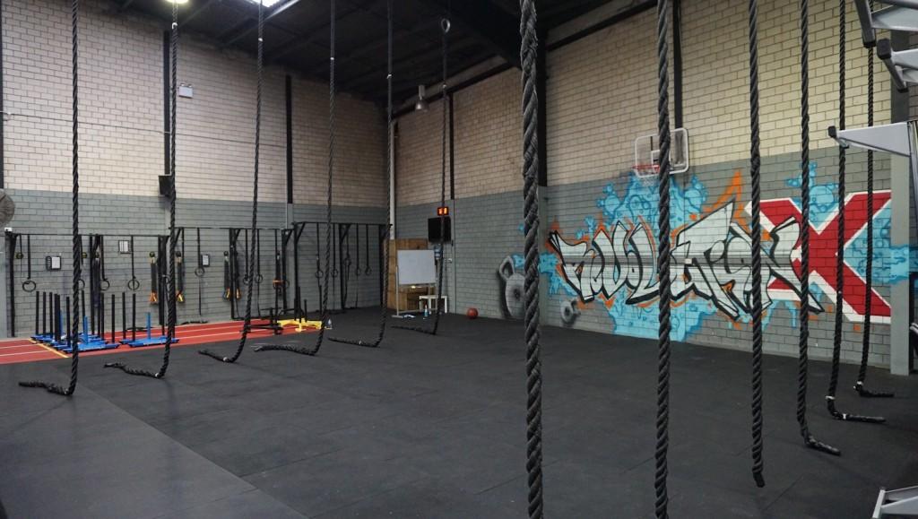 Rope Climbs Wall Art