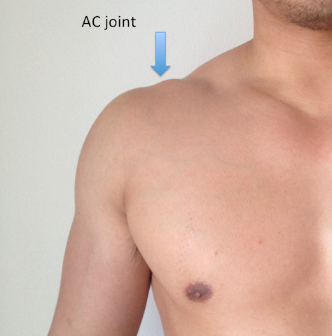 Anatomy of AC Joint